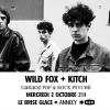 affiche Wild Fox + Kitch